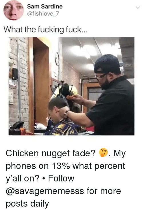 chicken nugget: Sam Sardine  @fishlove_7  What the fucking fuck Chicken nugget fade? 🤔. My phones on 13% what percent y'all on? • Follow @savagememesss for more posts daily