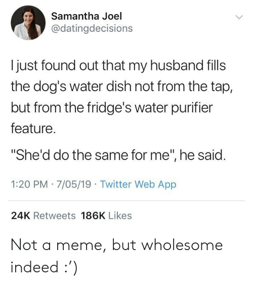 """Dogs, Meme, and Twitter: Samantha Joel  @datingdecisions  l just found out that my husband fills  the dog's water dish not from the tap,  but from the fridge's water purifier  feature  """"She'd do the same for me"""", he said  1:20 PM 7/05/19 Twitter Web App  24K Retweets 186K Likes Not a meme, but wholesome indeed :')"""
