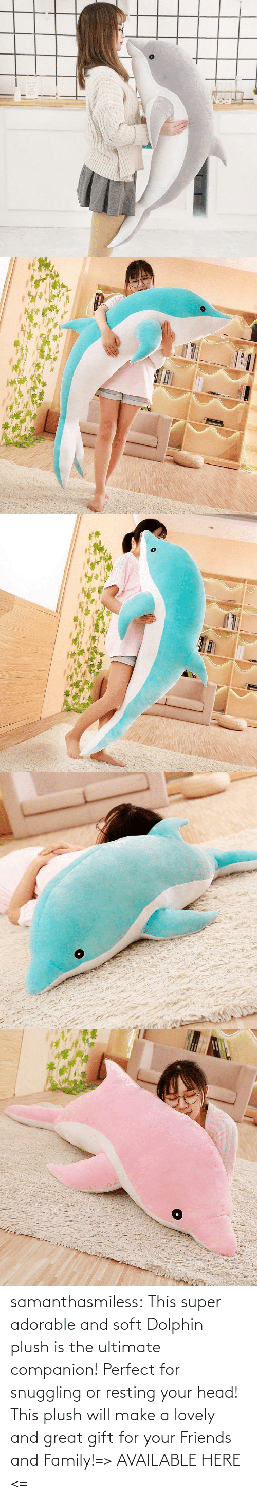 super: samanthasmiless:  This super adorable and soft Dolphin plush is the ultimate companion! Perfect for snuggling or resting your head! This plush will make a lovely and great gift for your Friends and Family!=> AVAILABLE HERE <=