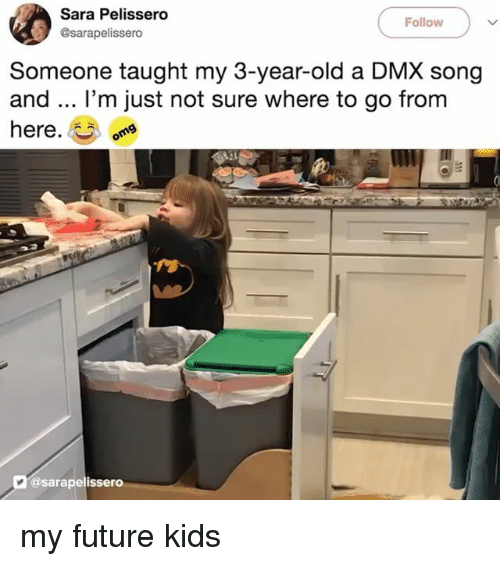 DMX: Sara Pelissero  @sarapelissero  Follow  Someone taught my 3-year-old a DMX song  and.. I'm just not sure where to go from  here.  @sarapelissero my future kids