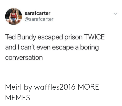 Dank, Memes, and Target: sarafcarter  NAM  @sarafcarter  Ted Bundy escaped prison TWICE  and I can't even escape a boring  conversation Meirl by waffles2016 MORE MEMES
