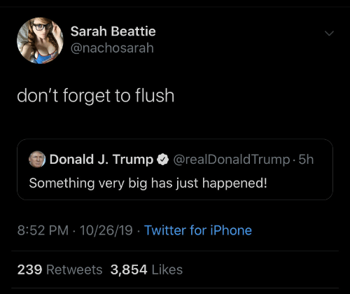 donald-j-trump: Sarah Beattie  @nachosarah  don't forget to flush  @realDonaldTrump 5h  Donald J. Trump  Something very big has just happened!  8:52 PM 10/26/19 Twitter for iPhone  239 Retweets 3,854 Likes