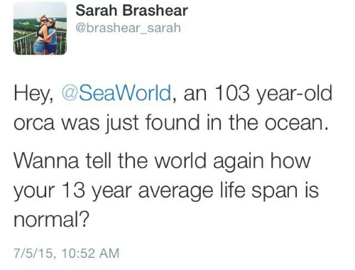 Life Span: Sarah Brashear  @brashear_sarah  Hey, @SeaWorld, an 103 year-old  orca was just found in the ocean  Wanna tell the world again how  your 13 year average life span is  normal?  7/5/15, 10:52 AM