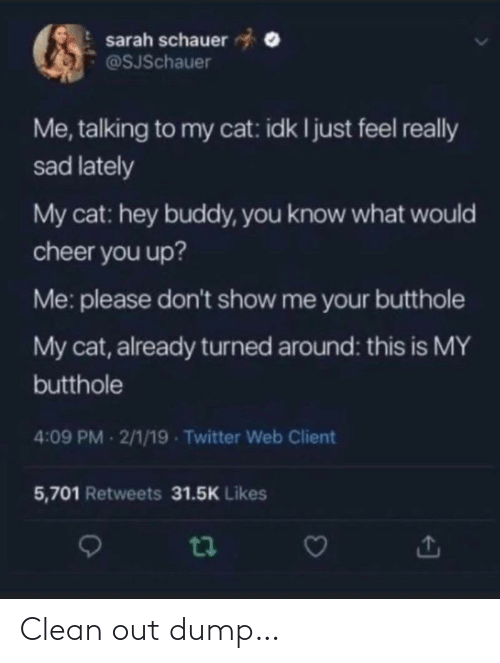 client: sarah schauer  @SJSchauer  Me, talking to my cat: idk I just feel really  sad lately  My cat: hey buddy, you know what would  cheer you up?  Me: please don't show me your butthole  My cat, already turned around: this is MY  butthole  4:09 PM 2/1/19 - Twitter Web Client  5,701 Retweets 31.5K Likes Clean out dump…