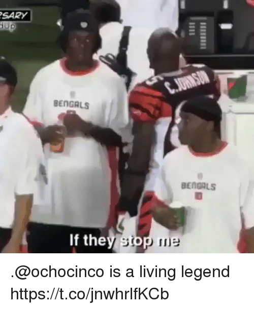 Football, Nfl, and Sports: SARY  BENGALS  BENCALS  If the .@ochocinco is a living legend https://t.co/jnwhrlfKCb