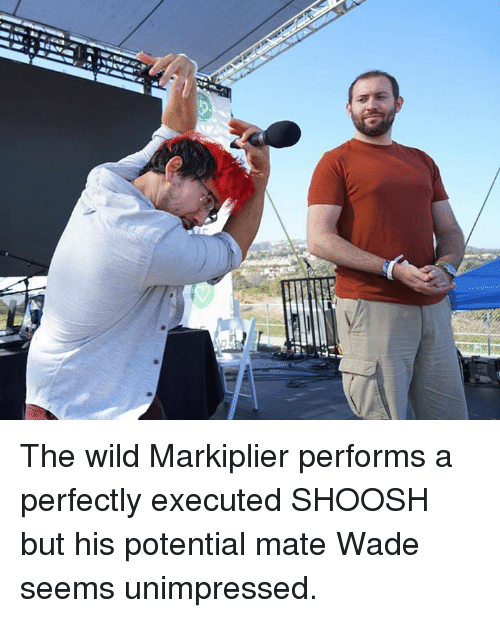 Markiplie: savan The wild Markiplier performs a perfectly executed SHOOSH but his potential mate Wade seems unimpressed.