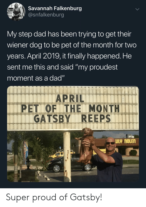 "Dad, Proud, and April: Savannah Falkenburg  V @snfalkenburg  My step dad has been trying to get their  wiener dog to be pet of the month for two  years. April 2019, it finally happened. He  sent me this and said ""my proudest  moment as a dad""  APRIL  PET OF THE MONTHIT  GATSBY REEPS  eer Super proud of Gatsby!"