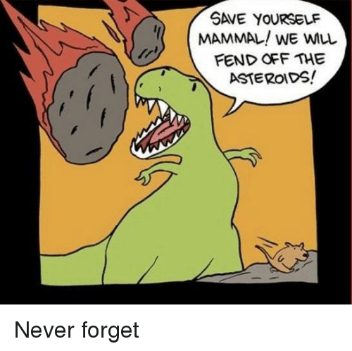 Save Yourself: SAVE YOURSELF  MAMMAL! WE WLL  FEND OFF THE  6ASTEROIDS! Never forget