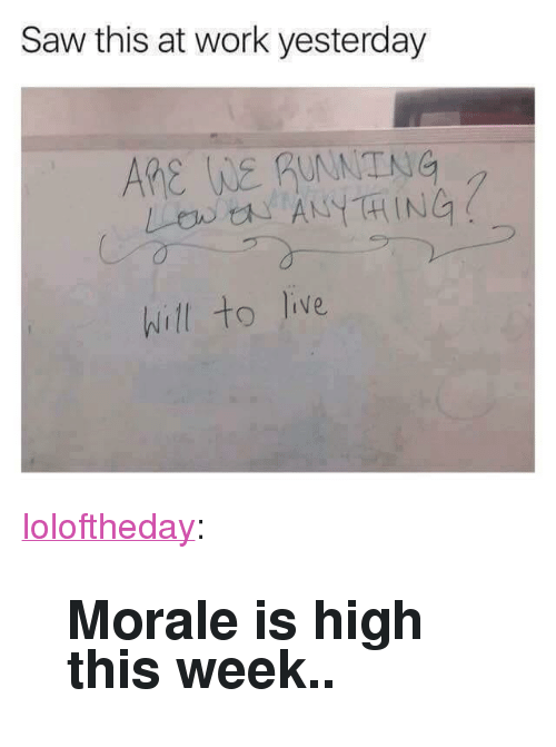"morale: Saw this at work yesterday  ARe WE guNNTNG  LB ANYTHING  hill to live <p><a href=""https://loloftheday.tumblr.com/post/166571984415/morale-is-high-this-week"" class=""tumblr_blog"">loloftheday</a>:</p>  <blockquote><h2>Morale is high this week..</h2></blockquote>"
