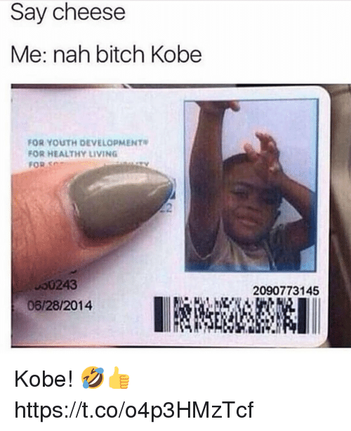 Bitch, Memes, and Kobe: Say cheese  Me: nah bitch Kobe  FOR YOUTH DEVELOPMENT  FOR HEALTHY LIVING  FOR SC  00243  06/28/2014  2090773145 Kobe! 🤣👍 https://t.co/o4p3HMzTcf