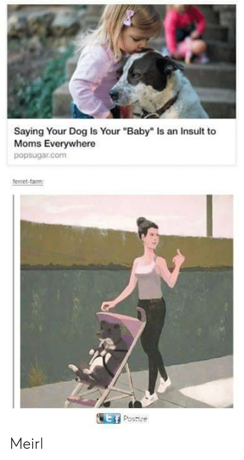 """Ferret: Saying Your Dog Is Your """"Baby"""" Is an Insult to  Moms Everywhere  popsugar.com  ferret-farm  Ef Postize Meirl"""