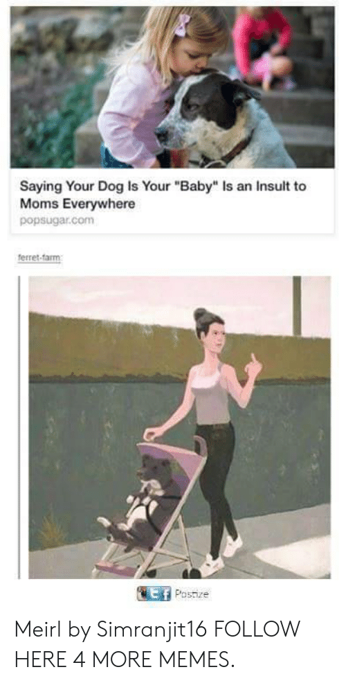 """Ferret: Saying Your Dog Is Your """"Baby"""" Is an Insult to  Moms Everywhere  popsugar.com  ferret-farm  Ef Postize Meirl by Simranjit16 FOLLOW HERE 4 MORE MEMES."""