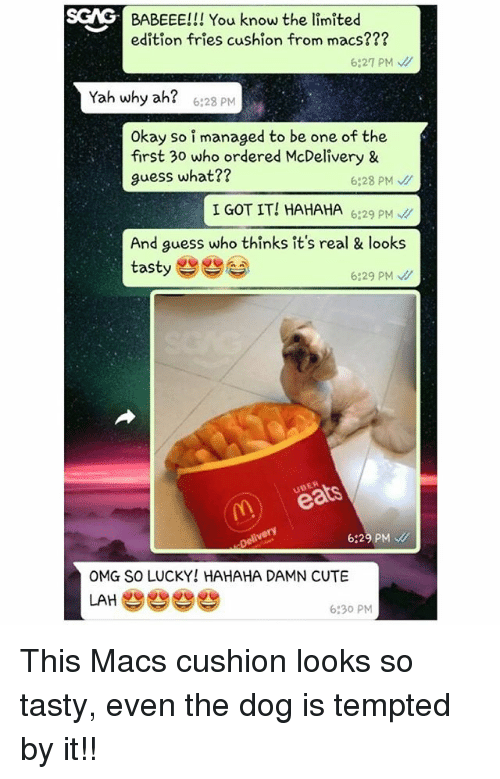 So Tasty: SCAG  S  BABEEE!!! You know the limited  edition fries cushion from macs???  6:27 PM  Yah why ah?  6:28 PM  Okay so i managed to be one of the  first 30 who ordered McDelivery &  guess what??  6:28 PM、//  I GOT IT! HAHAHA629 P  And guess who thinks it's real & looks  tasty e  6:29 PM  UBER  6:29 PM  OMG SO LUCKY! HAHAHA DAMN CUTE  LAHe  6:30 PM This Macs cushion looks so tasty, even the dog is tempted by it!!