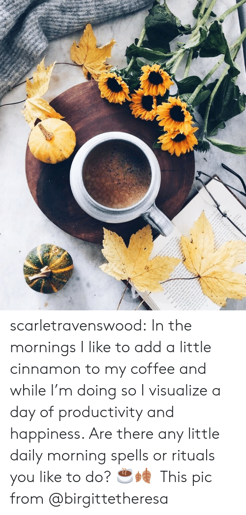 Target, Tumblr, and Blog: scarletravenswood: In the mornings I like to add a little cinnamon to my coffee and while I'm doing so I visualize a day of productivity and happiness. Are there any little daily morning spells or rituals you like to do? ☕️🍂  This pic from @birgittetheresa
