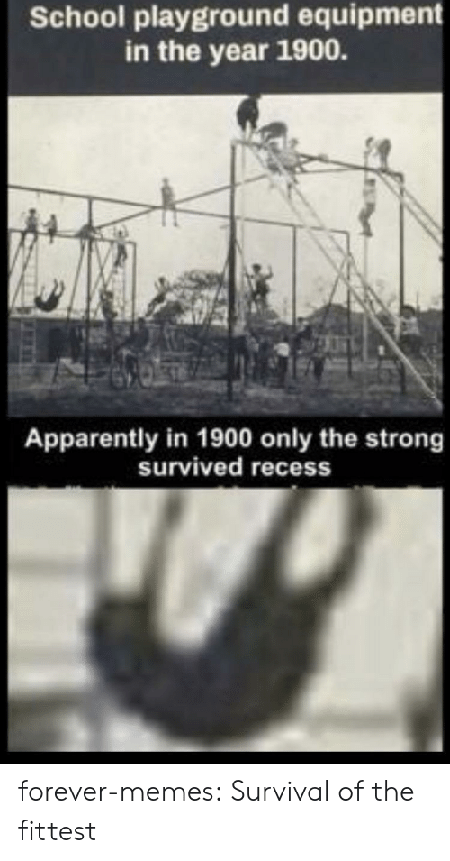 Apparently, Memes, and Recess: School playground equipment  in the year 1900.  Apparently in 1900 only the strong  survived recess forever-memes:  Survival of the fittest