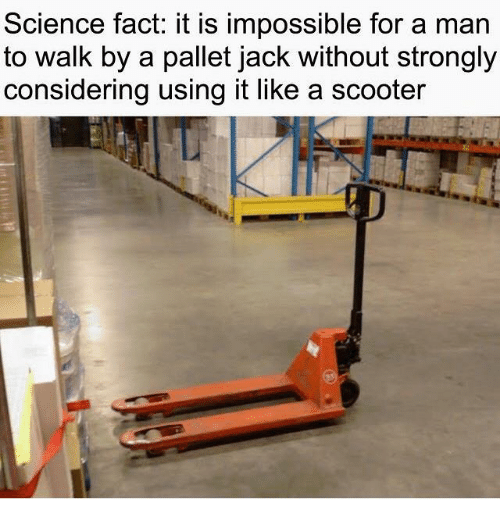 pallet: Science fact: it is impossible for a man  to walk by a pallet jack without strongly  considering using it like a scooter
