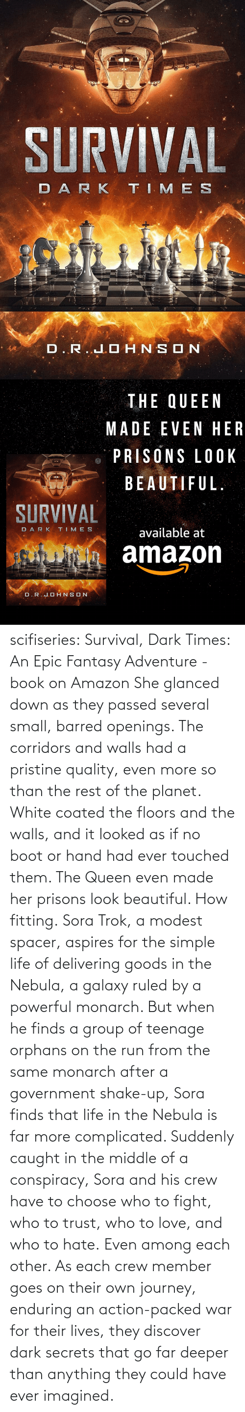 Amazon, Beautiful, and Journey: scifiseries: Survival, Dark Times: An Epic Fantasy Adventure - book on Amazon  She glanced down as they  passed several small, barred openings. The corridors and walls had a  pristine quality, even more so than the rest of the planet. White coated  the floors and the walls, and it looked as if no boot or hand had ever  touched them.  The Queen even made her prisons look beautiful.  How fitting. Sora  Trok, a modest spacer, aspires for the simple life of delivering goods  in the Nebula, a galaxy ruled by a powerful monarch. But when he finds a  group of teenage orphans on the run from the same monarch after a  government shake-up, Sora finds that life in the Nebula is far more complicated.  Suddenly  caught in the middle of a conspiracy, Sora and his crew have to choose  who to fight, who to trust, who to love, and who to hate. Even among each other.  As  each crew member goes on their own journey, enduring an action-packed  war for their lives, they discover dark secrets that go far deeper than  anything they could have ever imagined.