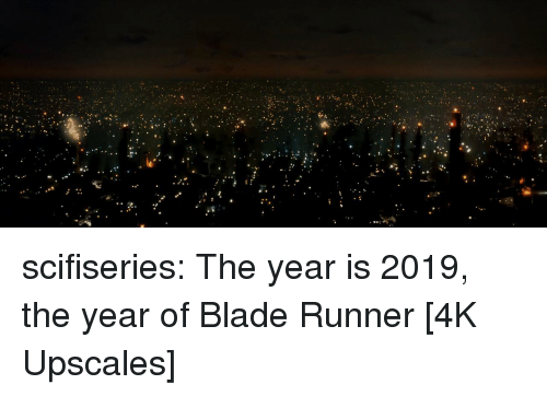 Blade, Tumblr, and Blog: scifiseries:  The year is 2019, the year of Blade Runner [4K Upscales]