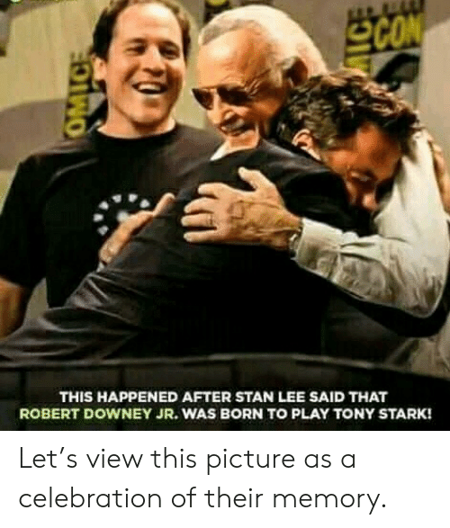 Robert Downey Jr.: SCON  THIS HAPPENED AFTER STAN LEE SAID THAT  ROBERT DOWNEY JR. WAS BORN TOo PLAY TONY STARK!  OMIC Let's view this picture as a celebration of their memory.