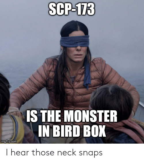 scp-173: SCP-173  IS THE MONSTER  IN BIRD BOX  imgflip.com I hear those neck snaps