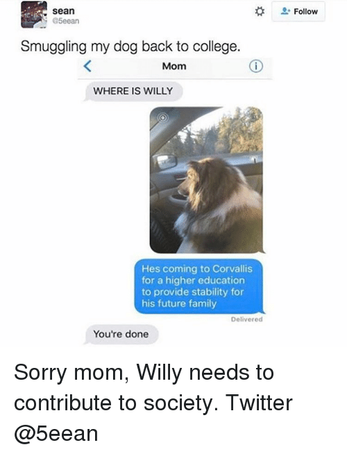 Providence: Sean  @5eean  Smuggling my dog back to college.  Mom  WHERE IS WILLY  Hes coming to Corvallis  for a higher education  to provide stability for  his future family  Delivered  You're done  Follow Sorry mom, Willy needs to contribute to society. Twitter @5eean