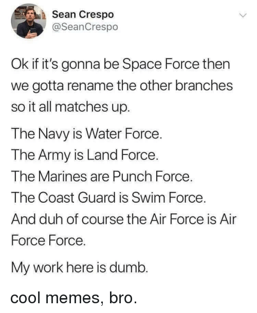 Marines: Sean Crespo  @SeanCrespo  Ok if it's gonna be Space Force then  we gotta rename the other branches  so it all matches up.  The Navy is Water Force.  The Army is Land Force.  The Marines are Punch Force  The Coast Guard is Swim Force  And duh of course the Air Force is Air  Force Force.  My work here is dumb. cool memes, bro.