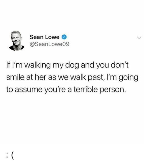 Memes, Smile, and 🤖: Sean Lowe  @SeanLowe09  2  If I'm walking my dog and you don't  smile at her as we walk past, I'm going  to assume you're a terrible person. : (