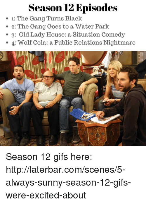 Alway Sunny: Season 12 Episodes  1: The Gang Turns Black  2: The Gang Goes to a Water Park  3: Old Lady House: a Situation Comedy  4: Wolf Cola: a Public Relations Nightmare Season 12 gifs here: http://laterbar.com/scenes/5-always-sunny-season-12-gifs-were-excited-about
