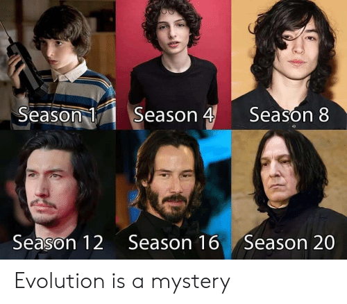 season 1: Season 4  Season 1  Season 8  Season 12  Season 16  Season 20 Evolution is a mystery