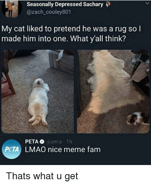 Fam, Lmao, and Meme: Seasonally Depressed Sachary 4)  @zach_cooley801  My cat liked to pretend he was a rug so l  made him into one. What y'all think?  @peta 1h  PeTA LMAO nice meme fam Thats what u get