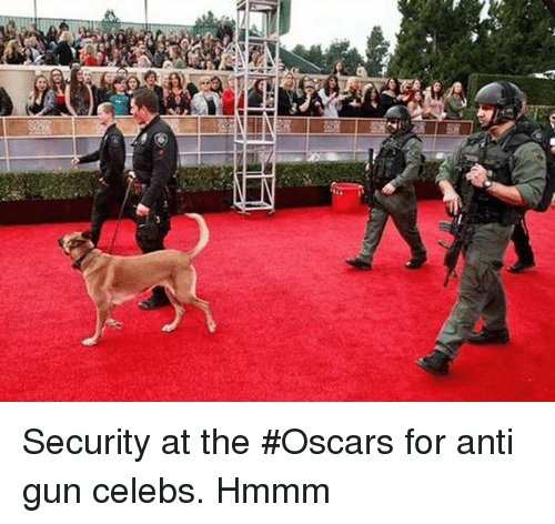 the oscars: Security at the #Oscars for anti gun celebs.  Hmmm