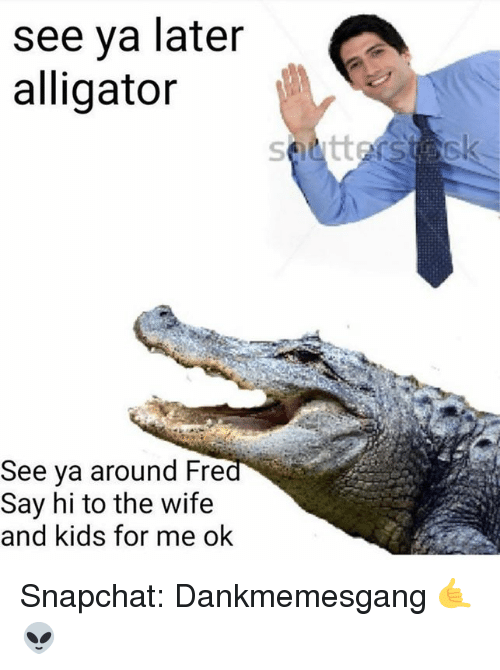 wife-and-kids: see ya later  alligator  See ya around Fre  Say hi to the wife  and kids for me ok Snapchat: Dankmemesgang 🤙👽