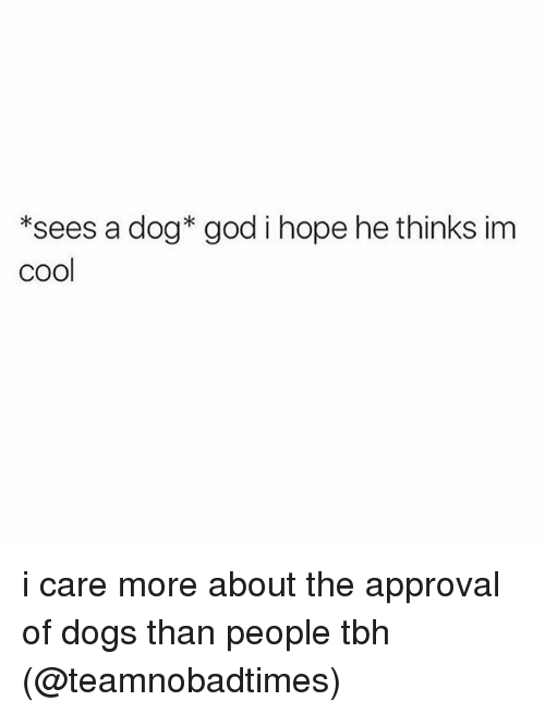 Dogs, God, and Memes: *sees a dog* god i hope he thinks im  cool i care more about the approval of dogs than people tbh (@teamnobadtimes)
