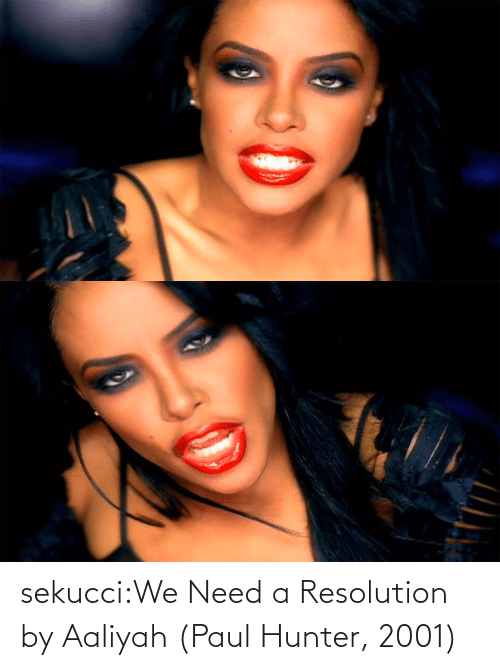 hunter: sekucci:We Need a Resolution by Aaliyah (Paul Hunter, 2001)