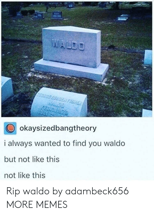 Dank, Memes, and Target: SELDEN FISHER  WALDO  1876  JULY 24  okaysizedbangtheory  i always wanted to find you waldo  but not like this  not like this Rip waldo by adambeck656 MORE MEMES