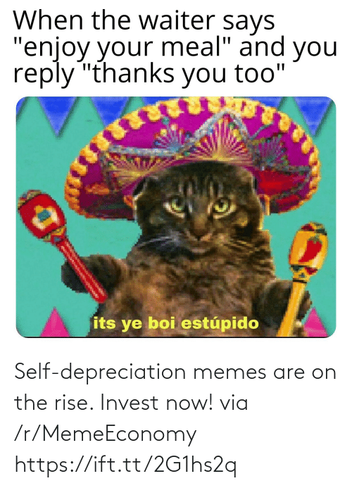 Are: Self-depreciation memes are on the rise. Invest now! via /r/MemeEconomy https://ift.tt/2G1hs2q