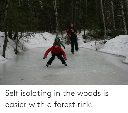 Rink: Self isolating in the woods is easier with a forest rink!