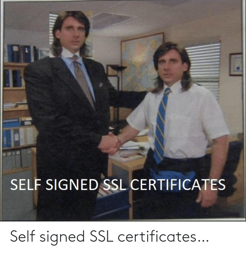 self: Self signed SSL certificates…