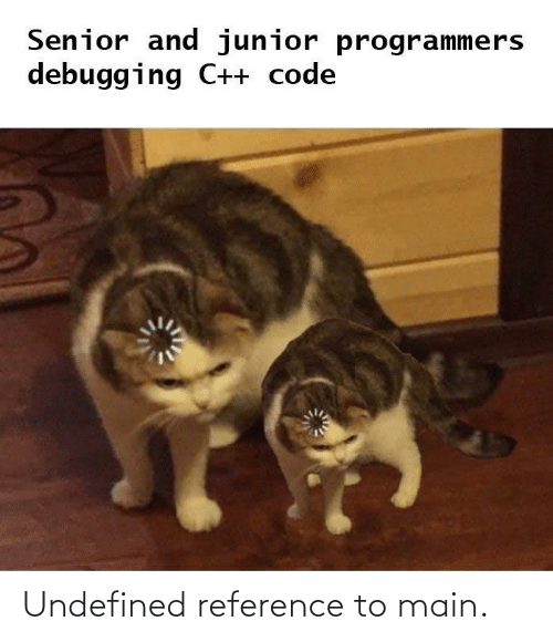 reference: Senior and junior programmers  debugging C++ code Undefined reference to main.