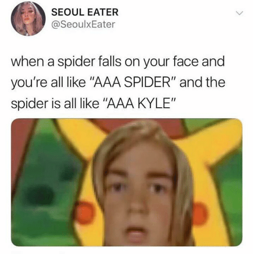 """aaa: SEOUL EATER  @SeoulxEater  when a spider falls on your face and  you're all like """"AAA SPIDER"""" and the  spider is all like """"AAA KYLE"""""""