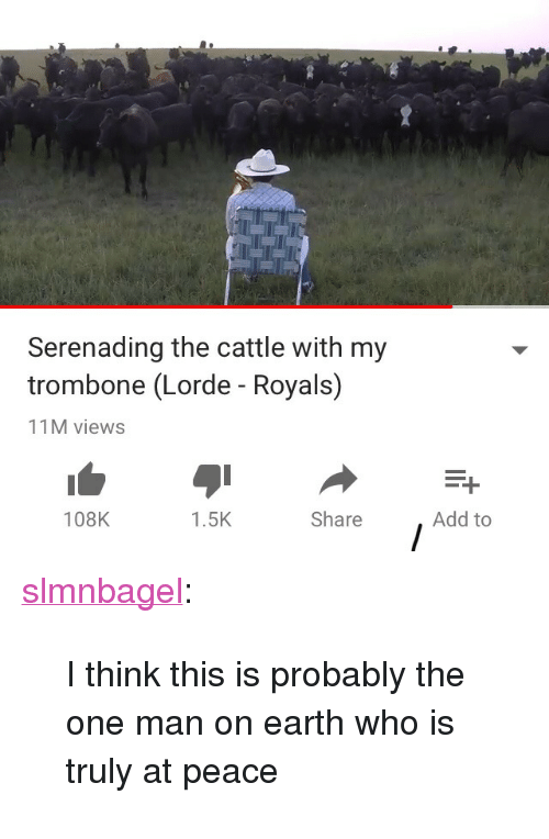 """Lorde: Serenading the cattle with my  trombone (Lorde - Royals)  11M views  108K  1.5K  Share  Add to <p><a href=""""http://slmnbagel.tumblr.com/post/172658322785/i-think-this-is-probably-the-one-man-on-earth-who"""" class=""""tumblr_blog"""" target=""""_blank"""">slmnbagel</a>:</p> <blockquote><p>I think this is probably the one man on earth who is truly at peace</p></blockquote>"""