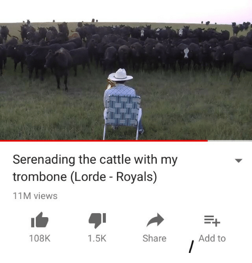 Lorde: Serenading the cattle with my  trombone (Lorde - Royals)  11M views  108K  1.5K  Share  Add to