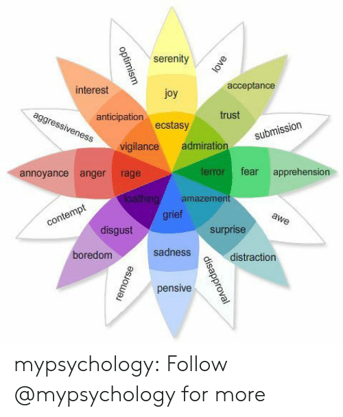 annoyance: serenity  interest  acceptance  joy  ecstasy  vigilance admiration  anticipation  trust  submiss  annoyance anger rage  terror fear apprehension  amazemen  rie  disgust  surprise  oredom  sadness  vdistraction  pensive mypsychology: Follow @mypsychology for more