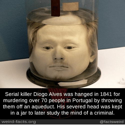 aqueduct: Serial killer Diogo Alves was hanged in 1841 for  murdering over 70 people in Portugal by throwing  them off an aqueduct. His severed head was kept  in a jar to later study the mind of a criminal.  weird-facts org  @facts weird