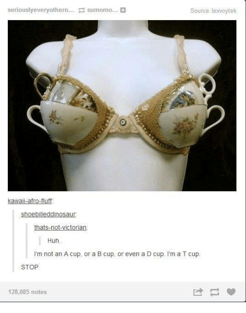 sumo: seriously everyothern  sumo mo...  Source: lexvoytek  kawaii-afro-fluff.  Shoebilleddinosaur  thats-not-Victorian  Huh  I'm not an A cup, or a B cup, or even a D cup. I'm a T cup.  STOP  128,085 notes