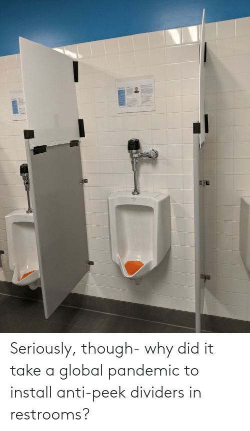 did: Seriously, though- why did it take a global pandemic to install anti-peek dividers in restrooms?