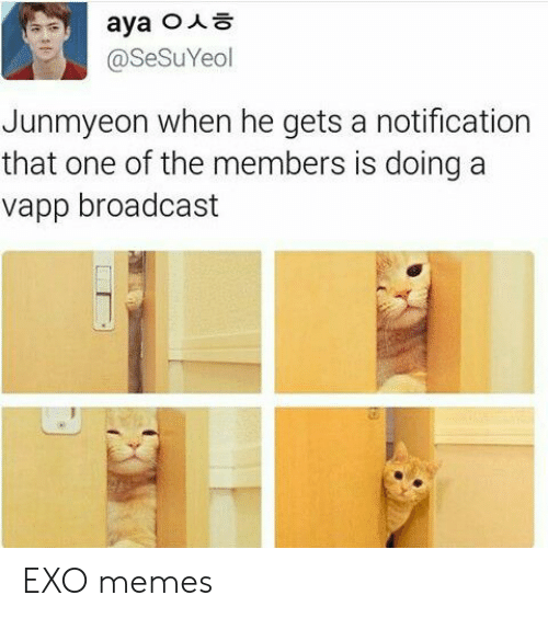 broadcast: @SeSuYeol  Junmyeon when he gets a notification  that one of the members is doing a  vapp broadcast EXO memes