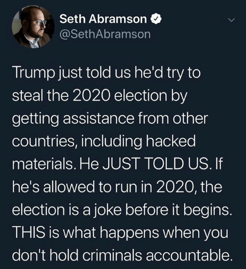 Criminals: Seth Abramson  @SethAbramson  Trump just told us he'd try to  steal the 2020 election by  getting assistance from other  countries, including hacked  materials. He JUST TOLD US. If  he's allowed to run in 2020, the  election is a joke before it begins.  THIS is what happens when you  don't hold criminals accountable.