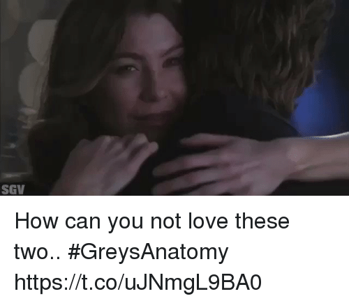 Love, Memes, and 🤖: SGV How can you not love these two.. #GreysAnatomy https://t.co/uJNmgL9BA0