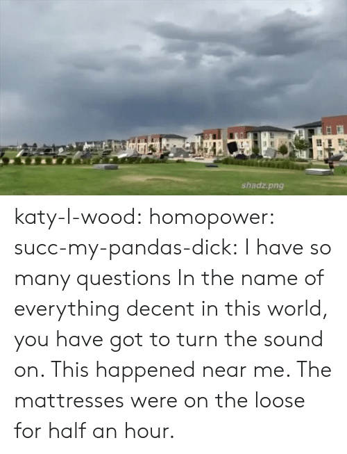 name of: shadz.png katy-l-wood: homopower:  succ-my-pandas-dick:  I have so many questions   In the name of everything decent in this world, you have got to turn the sound on.   This happened near me. The mattresses were on the loose for half an hour.